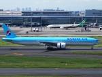 FT51ANさんが、羽田空港で撮影した大韓航空 777-3B5/ERの航空フォト(写真)