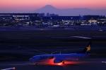 Hiro-hiroさんが、羽田空港で撮影したスカイマーク 737-8FZの航空フォト(写真)