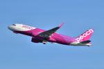@たかひろさんが、関西国際空港で撮影したピーチ A320-214の航空フォト(写真)