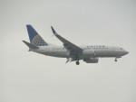commet7575さんが、福岡空港で撮影したユナイテッド航空 737-724の航空フォト(写真)