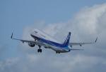 gomachanさんが、大館能代空港で撮影した全日空 A321-211の航空フォト(写真)