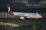 turenoアカクロさんが、成田国際空港で撮影したハワイアン航空 A330-243の航空フォト(写真)