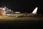 09RJNH27さんが、静岡空港で撮影したチャイナエアライン 737-8SHの航空フォト(写真)