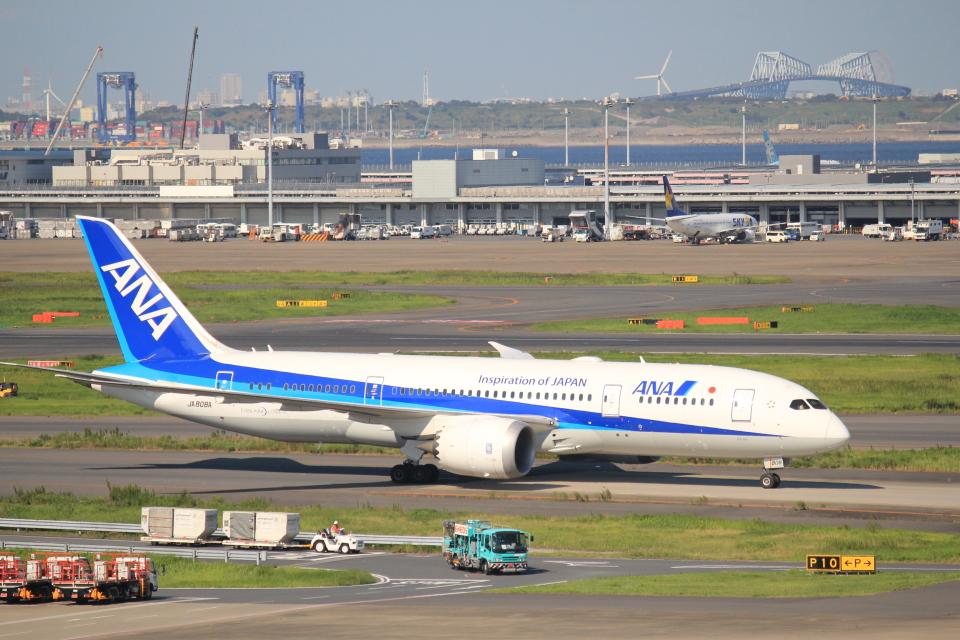 keitsamさんの全日空 Boeing 787-8 Dreamliner (JA808A) 航空フォト