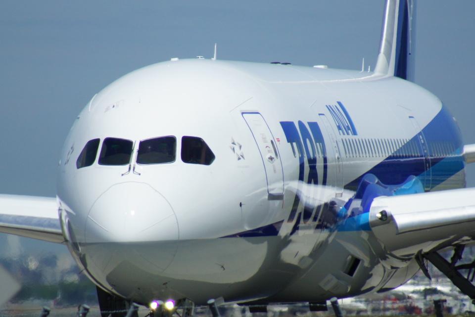 アングリー J バードさんの全日空 Boeing 787-9 (JA830A) 航空フォト
