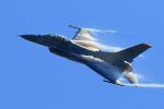 オポッサムさんが、小松空港で撮影したアメリカ空軍 F-16CM-50-CF Fighting Falconの航空フォト(写真)