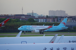 JA8037さんが、杭州蕭山国際空港で撮影した長竜航空 A320-214の航空フォト(飛行機 写真・画像)