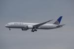 レドームさんが、羽田空港で撮影したユナイテッド航空 787-9の航空フォト(写真)