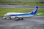 TG36Aさんが、羽田空港で撮影した全日空 737-54Kの航空フォト(写真)