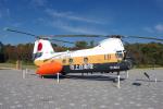 yabyanさんが、かかみがはら航空宇宙科学博物館で撮影した陸上自衛隊 KV-107IIA-4の航空フォト(飛行機 写真・画像)
