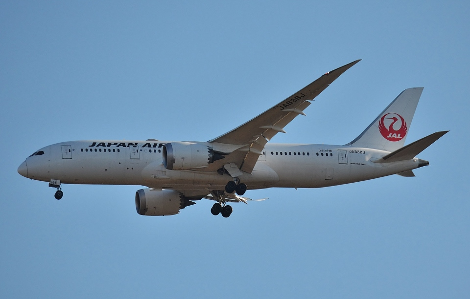 鉄バスさんの日本航空 Boeing 787-8 Dreamliner (JA838J) 航空フォト