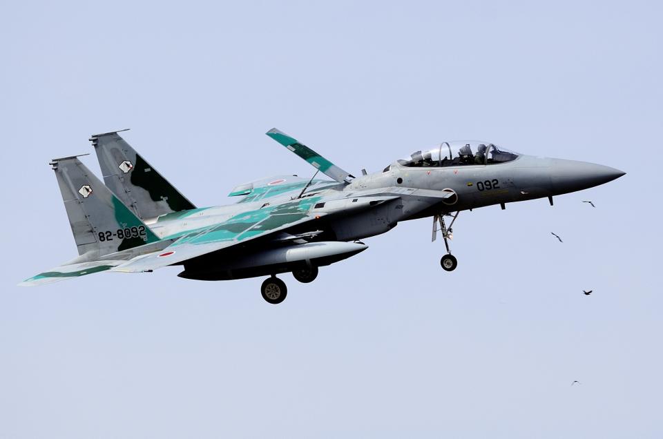 sepia2016さんの航空自衛隊 Mitsubishi F-15DJ Eagle (82-8092) 航空フォト