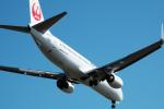 こうきさんが、羽田空港で撮影した日本航空 737-846の航空フォト(写真)