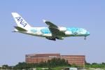 S.Chobyさんが、成田国際空港で撮影した全日空 A380-841の航空フォト(写真)