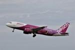 もぐ3さんが、新潟空港で撮影したピーチ A320-214の航空フォト(写真)