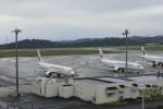 ピーチさんが、岡山空港で撮影した日本トランスオーシャン航空 737-8Q3の航空フォト(写真)