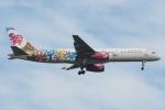 木人さんが、成田国際空港で撮影したサンデー・エアラインズ 757-204の航空フォト(写真)