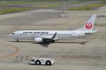 EC5Wさんが、中部国際空港で撮影した日本航空 737-846の航空フォト(写真)