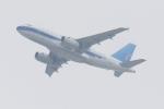 気分屋さんが、成田国際空港で撮影したユナイテッド航空 A319の航空フォト(飛行機 写真・画像)