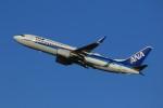 メンチカツさんが、新千歳空港で撮影した全日空 737-881の航空フォト(写真)