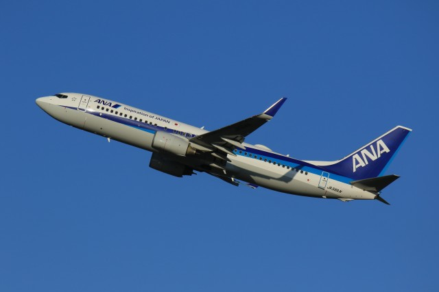 メンチカツさんが、新千歳空港で撮影した全日空 737-881の航空フォト(飛行機 写真・画像)