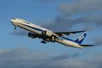 メンチカツさんが、新千歳空港で撮影した全日空 777-381の航空フォト(写真)
