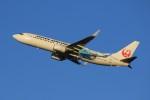 メンチカツさんが、新千歳空港で撮影した日本航空 737-846の航空フォト(写真)