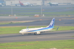 hareotokoさんが、羽田空港で撮影した全日空 737-881の航空フォト(写真)