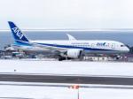 こうきさんが、函館空港で撮影した全日空 787-8 Dreamlinerの航空フォト(写真)