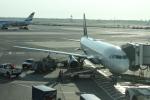 uhfxさんが、ジョン・F・ケネディ国際空港で撮影したデルタ航空 A320-212の航空フォト(飛行機 写真・画像)