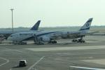 uhfxさんが、ジョン・F・ケネディ国際空港で撮影したエル・アル航空 787-9の航空フォト(写真)