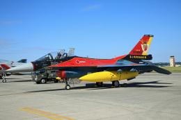 Wasawasa-isaoさんが、横田基地で撮影した航空自衛隊 F-2Aの航空フォト(飛行機 写真・画像)