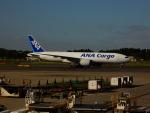 kiyohsさんが、成田国際空港で撮影した全日空 777-F81の航空フォト(飛行機 写真・画像)