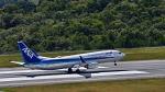 オキシドールさんが、広島空港で撮影した全日空 737-881の航空フォト(写真)