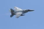 元青森人さんが、千歳基地で撮影した航空自衛隊 F-15J Eagleの航空フォト(飛行機 写真・画像)