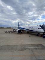 るかりおさんが、伊丹空港で撮影した全日空 787-8 Dreamlinerの航空フォト(写真)