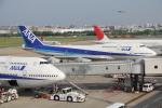 チェリーさんが、福岡空港で撮影した全日空 747-481(D)の航空フォト(写真)