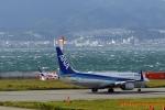 湖景さんが、関西国際空港で撮影した全日空 737-881の航空フォト(写真)