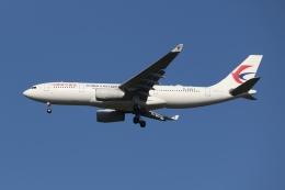SIさんが、成田国際空港で撮影した中国東方航空 A330-243の航空フォト(写真)
