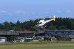 ひめままさんが、宮崎空港で撮影したノエビア AS350B Ecureuilの航空フォト(写真)