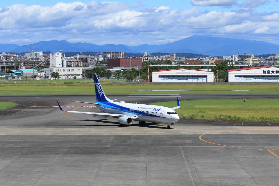 ひめままさんの全日空 Boeing 737-800 (JA69AN) 航空フォト