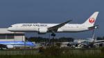 パンダさんが、成田国際空港で撮影した日本航空 787-9の航空フォト(写真)
