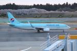 OMAさんが、成田国際空港で撮影した大韓航空 737-8BKの航空フォト(飛行機 写真・画像)