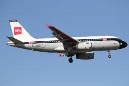 taka777さんが、ロンドン・ヒースロー空港で撮影したブリティッシュ・エアウェイズ A319-131の航空フォト(飛行機 写真・画像)