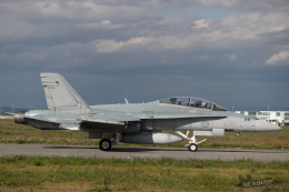 うみBOSEさんが、千歳基地で撮影したオーストラリア空軍 F/A-18B Hornetの航空フォト(写真)