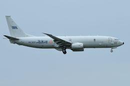 うめやしきさんが、厚木飛行場で撮影したインド海軍 P-8I (737-8FV)の航空フォト(写真)