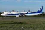 I.K.さんが、伊丹空港で撮影した全日空 A321-211の航空フォト(写真)