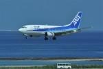 kumagorouさんが、那覇空港で撮影したANAウイングス 737-5L9の航空フォト(写真)