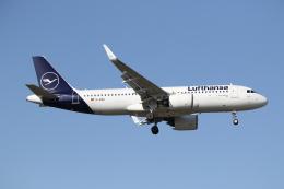 航空フォト:D-AINU ルフトハンザドイツ航空 A320neo