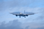 mojioさんが、成田国際空港で撮影した全日空 787-8 Dreamlinerの航空フォト(飛行機 写真・画像)